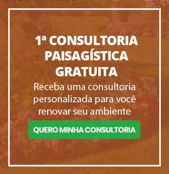 1ª consultoria gratuita